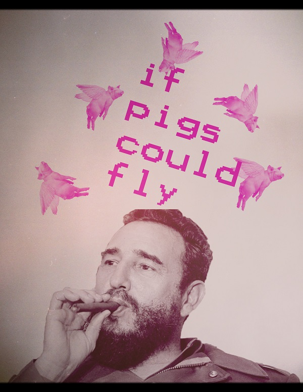 If Pigs Could Fly (Fidel Castro)