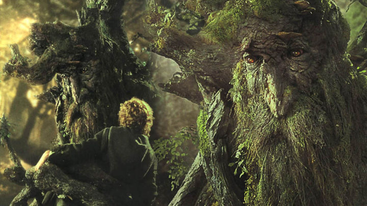 treebeard-720x405