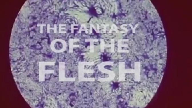 Kurt Sova The Unsolved Mystery: Fantasy of the Flesh (Ebook)