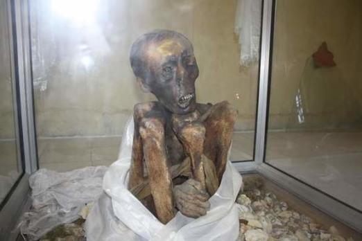 Mummy lama1